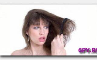 Статья. Можно ли изменить тип волос?