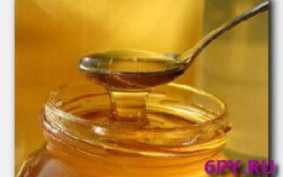 Лук с медом-борьба с сезонными заболеваниями и облысением
