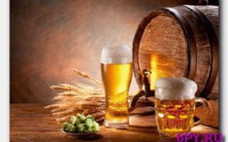 Если пить пиво каждый день-лишний вес и гормональные сбои