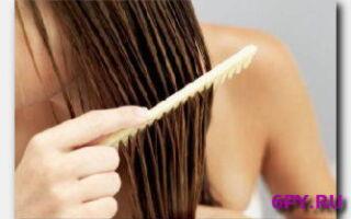 Статья. Можно ли расчесывать мокрые волосы: рассеиваем мифы