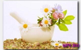 Статья. Натуральная косметика: безопасный способ сохранить красоту