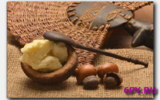 Статья. Масло карите (ши) — полезные свойства, применение в косметологии