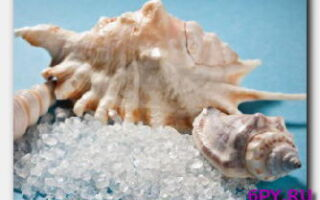 Статья. Полезные свойства морской соли для красоты и здоровья