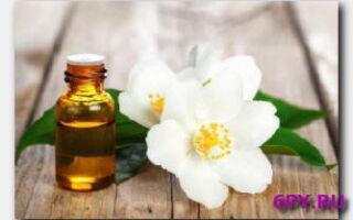 Статья. Чем полезно эфирное масло жасмина?