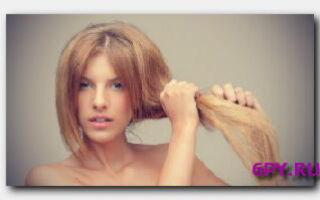 Статья. Как ухаживать за сухими волосами?