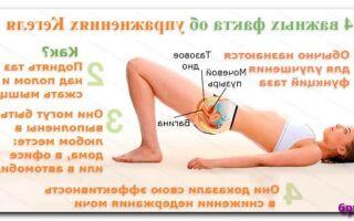 Четыре упражнения Кегеля для женского здоровья