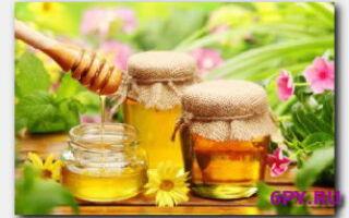 Статья. Эффективные маски с медом для волос