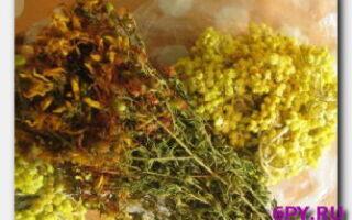 Какие травы помогут от бессоницы