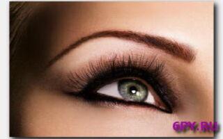 Статья. Как правильно выбрать кисти для макияжа бровей